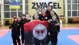 Zvyagel Open 2016